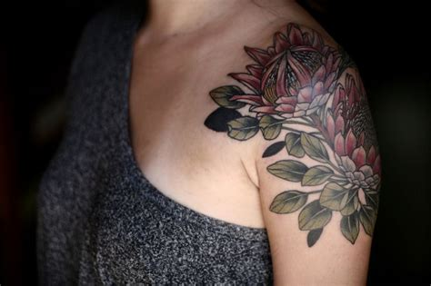 tattoo protea flower 304 best images about protea on pinterest protea