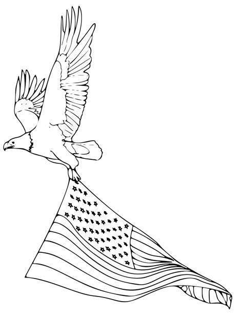 coloring pages bald eagle and us flag free coloring pages of bald eagle printable