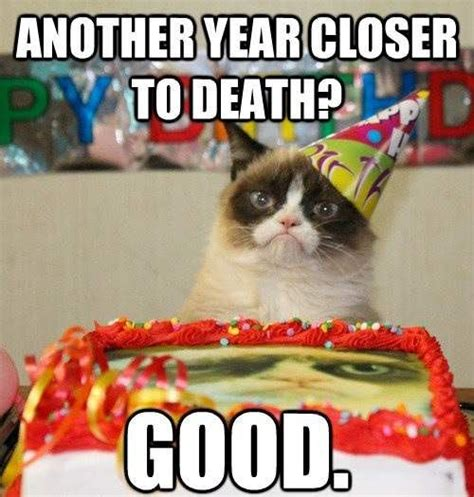 Grumpy Cat Happy Birthday Meme - 25 happy birthday funny quotes quotes words sayings