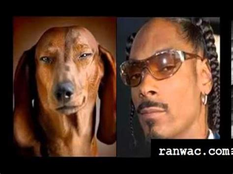 celebrity look meaning in hindi funny celebrity look alikes youtube