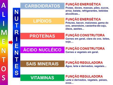 proteinas e lipidios al imentos nutr i entes carboidratos lip 205 dios prote 205 nas