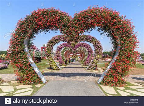 a shaped garden flower shaped arches covered in flowers at dubai s miracle