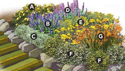 marathon bloomers perennial garden plan plant list a 3