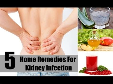 5 home remedies for a kidney infection pyelonephritis