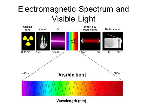 Electromagnetic Spectrum Visible Light by Photosynthesis Ppt