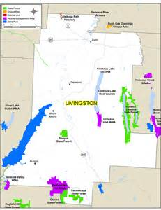 livingston county map nys dept of environmental