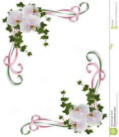 orchids and ivy border corner design royalty free stock