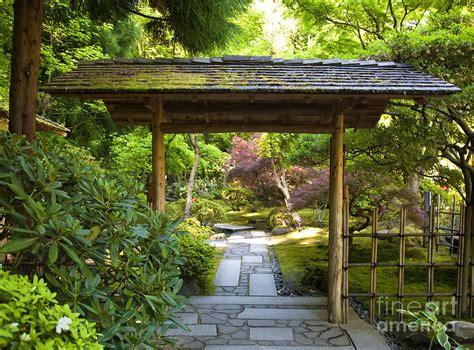 Japanese Garden Arbor Japanese Garden Photograph By David Buffington