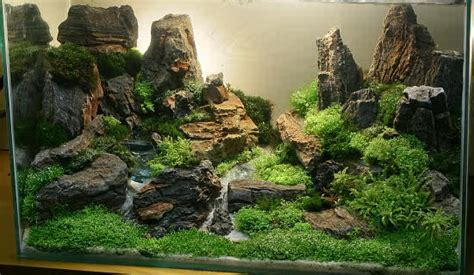 Aquascaping Rocks by Aquarium Fish Aquascaping For Fish Aquarium