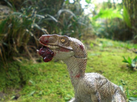 what does velociraptor eat it velociraptor eating by x alex on deviantart