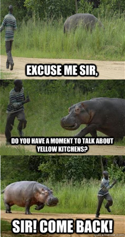 Hippo Meme - excuse me sir meme hippo www pixshark com images