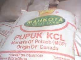 Jual Pupuk K Bioboost Di Medan 1 kcl mahkota kios pupuk distributor pupuk jual pupuk