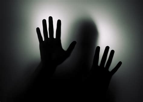 bipolar service bipolar psychiatric consultants llc