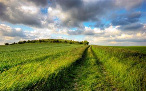 imagenes de paisajes y caminos camino entre la hierba fondos de pantalla hd wallpapers hd