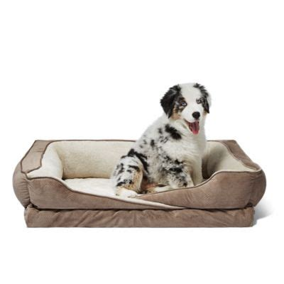 orthopedic dog bed buy orthopedic dog bed from bed bath beyond