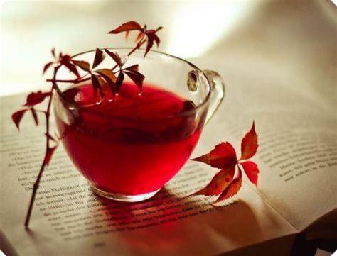 Detox Santa Clara by Liz Swann S Tea Detox Review Is It A Scam