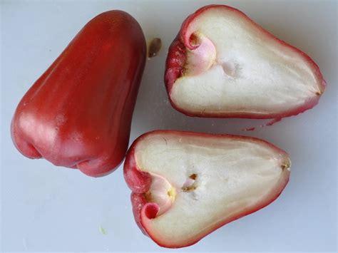 produce blog  rick chong   buy fresh fruit
