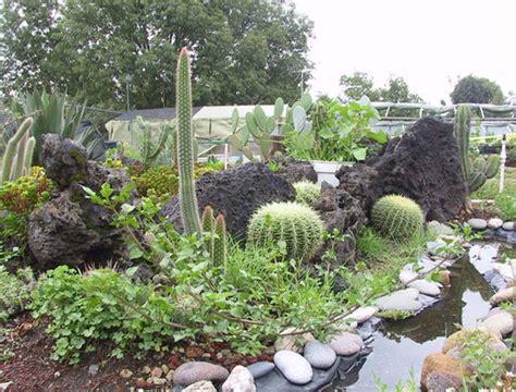 imagenes de jardines botanicos en mexico jardines bot 225 nicos en el df naturaleza pura en la ciudad