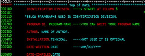 Section In Cobol by Mainframes
