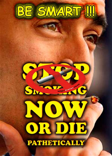 membuat poster lingkungan contoh poster contoh slogan dan poster kopihijauinfo