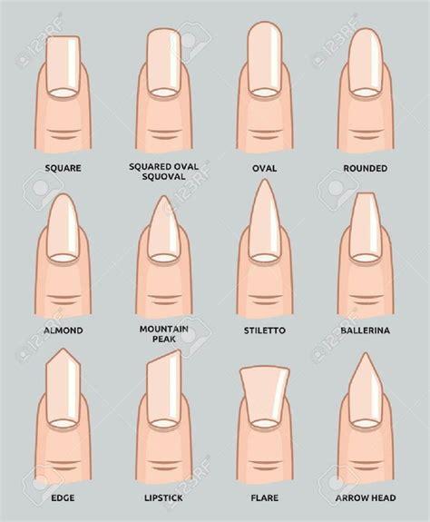 most popular nail length and shape best 25 acrylic nails ideas on pinterest acrylics nail