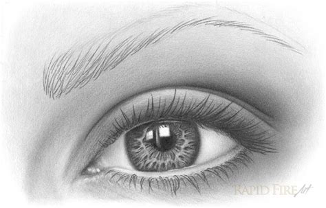 adding expression how to draw eyebrows step by step how to draw eyebrows on paper rapidfireart
