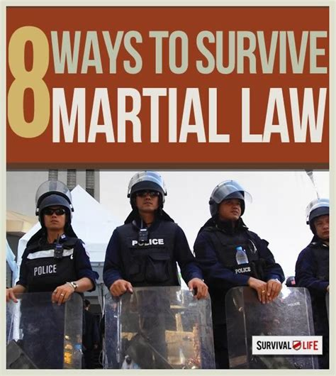 survival guide martial 25 survival lessons on how to survive a complete government and takeover in your city books 17 best ideas about survival gear on