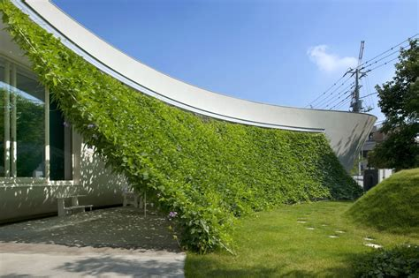 lovely green wall integrated in the design of a japanese