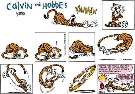 it s a magical world a calvin and hobbes collection tumblr ml1ubrrfjl1qdp8pko1 1280 gif