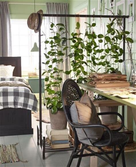 plant room divider 25 best ideas about ikea room divider on pinterest room
