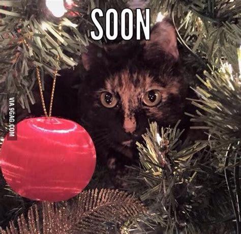 christmas tree oh christmas tree your ornaments are history tree o tree your ornaments are history 9gag