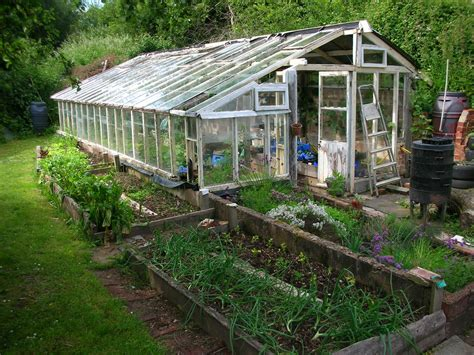 greenhouses bestofhouse net 19454