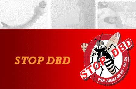 Stop Demam Berdarah Dengue penyakit dan cara perawatannya cara perawatan dan