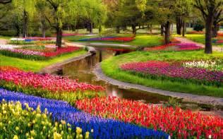 Pictures Flowers Gardens Beautiful Nature Flowers Garden Wallpaper
