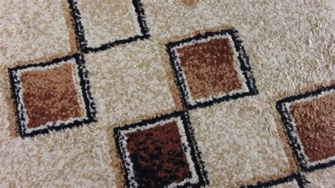 Baking Soda Rug by Cleaning Area Rugs With Baking Soda Home Design Ideas