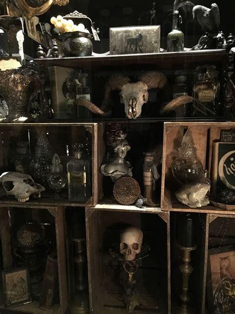 morbid home decor old ram skull 165 http www gothicroseantiques com