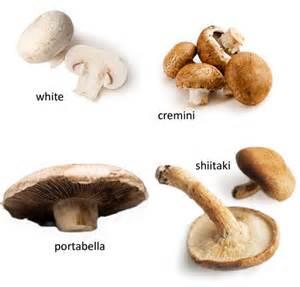 creamy mushroom soup straight up food