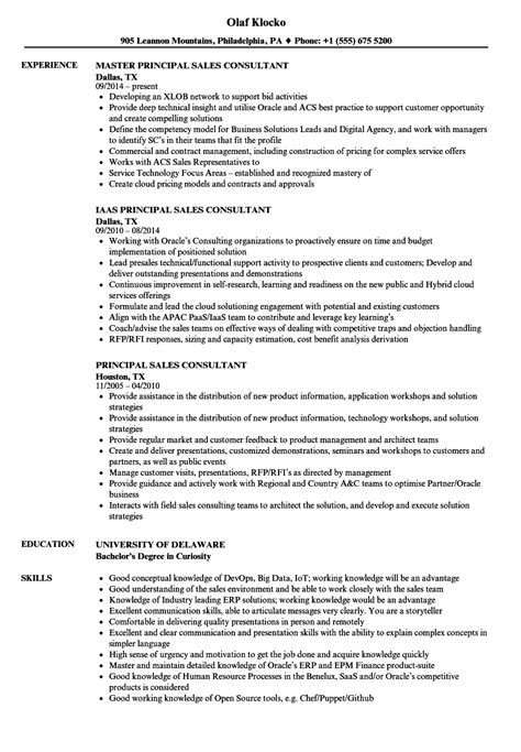 professional sales consultant resume template page 3