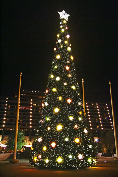 contemporary resort holiday decorations 2008 photo 8 of 8