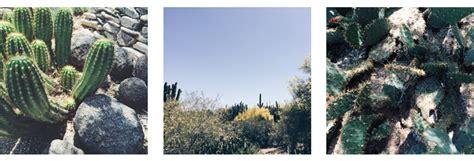 Soft Spirit Strong Blog Page 5 Of 21 Desert Botanical Garden Membership