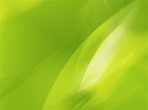 lime green wall lime green wallpaper 21079 1600x1200 px hdwallsource com