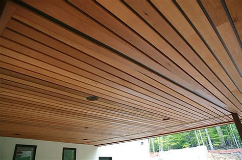 Wood Finish Linear Ceiling Wholesale Trader From Delhi