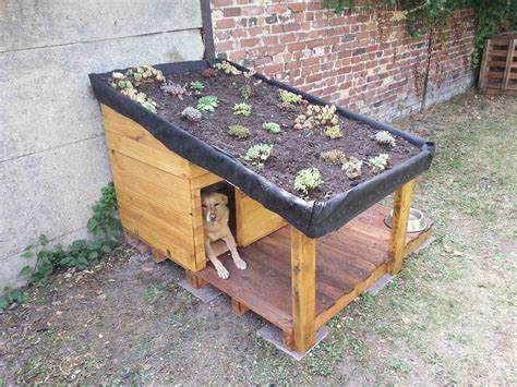 Palet Bed Doghouse With Green Roof Niche Pour Chien Avec Toiture