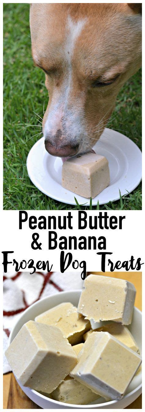 puppy formula without yogurt 25 best ideas about frozen treats on diy treats puppy treats and