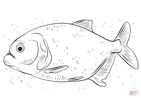 Piranha Coloring Page e621 belly big clothing gender transformation