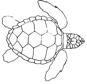 Sea Turtle Swimming Outline by Simple Sea Turtle Outline