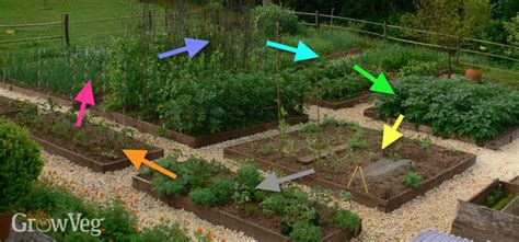 vegetable garden rotation crop rotation for growing vegetables