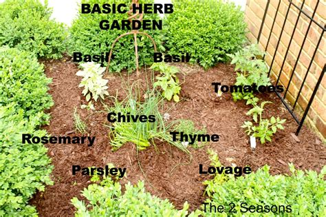 herb garden basics the 2 seasons the lifestyle
