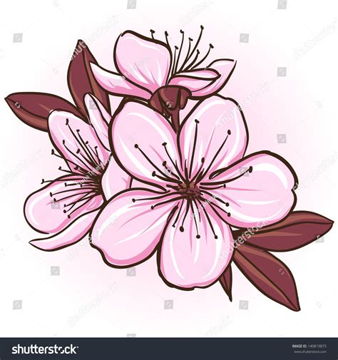 cherry blossom decorative floral illustration sakura stock