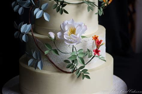 Wedding Cakes Boston by Silver Cloud Cakes Reviews Ratings Wedding Cake